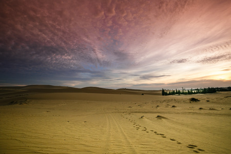 Dawn on the sand dunes photo