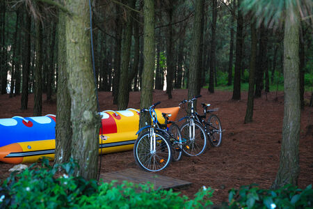 landscape mode: Two sport bikes in the woods