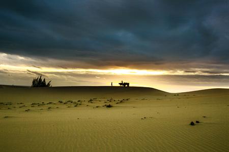 erg: Dawn on the sand dunes Stock Photo