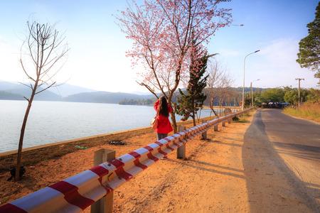 Cherry blossom parties lake