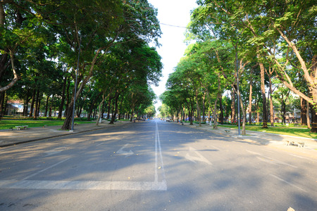 filming point of view: Asphalt road with tree in city