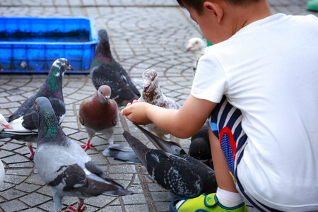 Babie: Hochiminh City, Vietnam - July 14, 2015: babie for feeding pigeons on the streets of Saigon