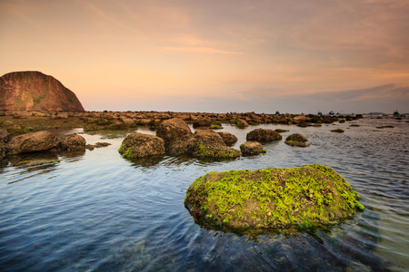 crag: coast with rocks and moss in Phu Yen, Vietnam
