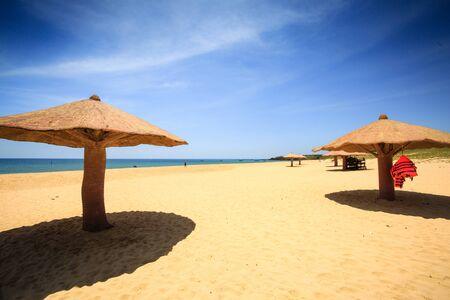 par�?s: concreted as mushroom parasol on the beach
