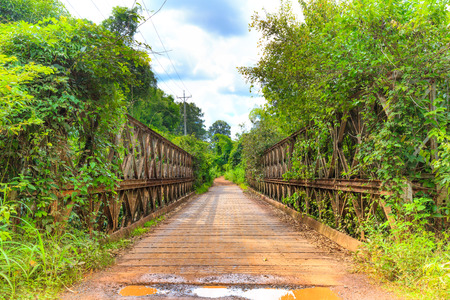 struts: old iron bridge in the forest