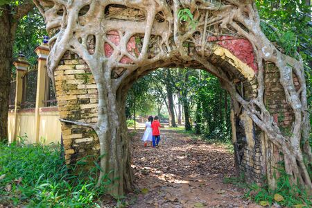 se cramponner: Binh Duong province, Vietnam - October 25, 2015: Bodhi tree roots cling to the door of the old temple