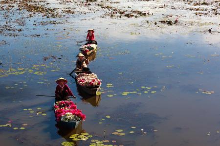 MOC 호아 지구, 롱안 성, 베트남 - 2015년 11월 22일 : 호수에 보트 사람들이 수련, 물 백합 요리로 야채로 사용이 지역의 사람들을 수확 에디토리얼