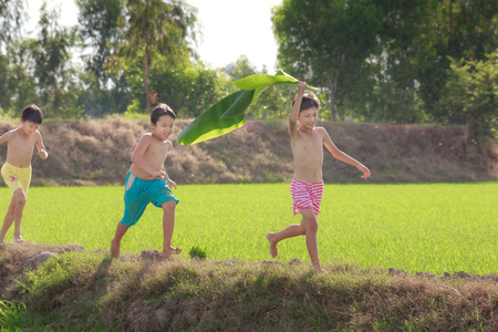 romp: Moc Hoa District, Long An Province, Vietnam - November 22, 2015: in the weekend, children playing often Do Frolic print rural Villages, rice paddies Beside the romp together