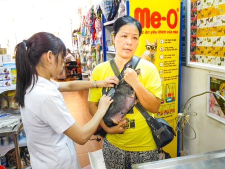 health facility: Hochiminh City, Vietnam - December 1, 2015: veterinarian is checking the health of a chihuahua puppy in a service facility for pet health care. A service nm Thriving