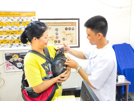 nm: Hochiminh City, Vietnam - December 1, 2015: veterinarian is checking the health of a chihuahua puppy in a service facility for pet health care. A service nm Thriving