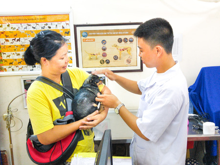 health care facility: Hochiminh City, Vietnam - December 1, 2015: veterinarian is checking the health of a chihuahua puppy in a service facility for pet health care. A service nm Thriving