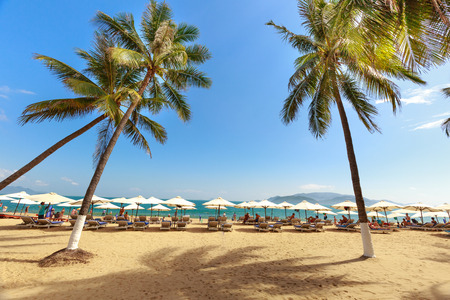 Nha Trang city, Vietnam - Janruary 30, 2016 : overlooking the beautiful coast of Nha Trang with palm trees on the beach with deck chair and parasol