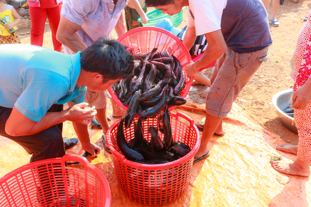 fish selling: Tri An Lake, Dong Nai province, Vietnam - March 6, 2016 - Vendors selling fresh water fishes lying on a platform in local market. Fish are raised on the lake Editorial
