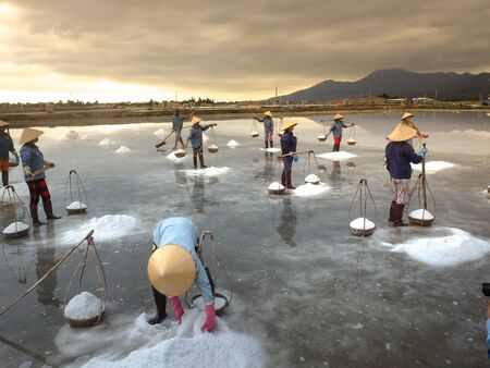 hon: Ninh Thuan Province, Vietnam - February 28, 2016 :the women are working on salt field at dawn. Salt field Hon Khoi in Nha Trang, Viet Nam. Workers transporting salt from the fields Hon Khoi, Viet Nam. Editorial