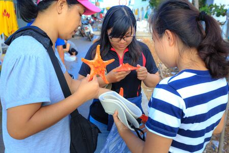 cushion sea star: Phu Quoc island, Kien Giang province, VietNam - May 03, 2016: tourists viewing and purchasing starfish. They buy as souvenirs after each trip to Phu Quoc Island