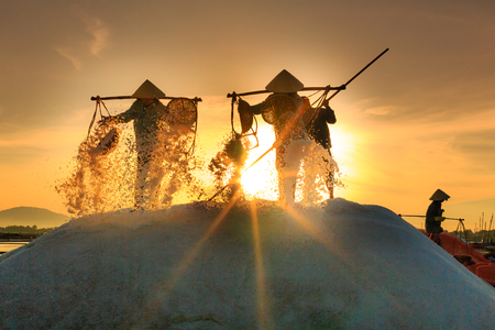 Hon Khoi, Khanh Hoa Province, Vietnam - July 30, 2016 :the women are working on salt field at dawn. Salt field Hon Khoi in Nha Trang, Viet Nam. Workers transporting salt from the fields Hon Khoi, Viet Nam.