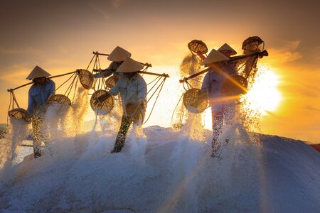 hon: Hon Khoi, Khanh Hoa Province, Vietnam - July 30, 2016 :the women are working on salt field at dawn. Salt field Hon Khoi in Nha Trang, Viet Nam. Workers transporting salt from the fields Hon Khoi, Viet Nam.