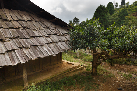 roofed wooden roofing of the highland ethnic minorities in Yen Bai province, Vietnam