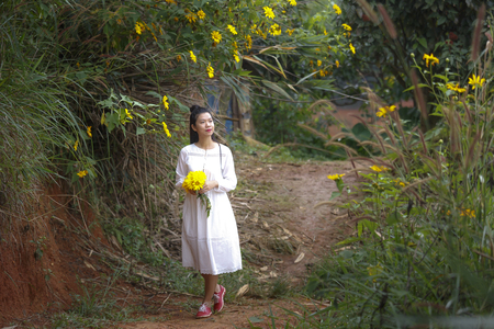 loc: Bao Loc, Lam Dong Province, Vietnam - November 5, 2016 : young girl holding a bouquet of freshly picked wild sunflower between the bushes of wild sunflower bloom in yellow, colorful scene Editorial