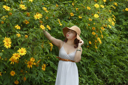 Bao Loc, Lam Dong Province, Vietnam - November 5, 2016 : young girl walking on path of countryside between the bushes of wild sunflower bloom in yellow, colorful scene