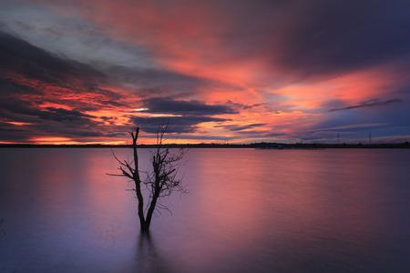 magische scène in de zonsondergang op het wilde meer met eenzame droge bomen. Deze foto is gemaakt door een lange belichtingstechniek.