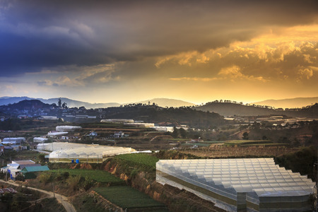 dalat: Da Lat town, Vietnam - February 18, 2017: Image of the sunrays into the sunset down a valley with full of greenhouses in Da Lat town, Viet Nam Editorial