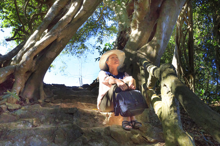 loc: Bao Loc town, Lam Dong Province, Vietnam - February 28, 2017: beautiful woman  sitting for relaxing under the old tree in the forest of the national park in Bao Loc town, Lam Dong province, Vietnam. Editorial