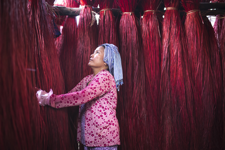 a creator: Dinh Yen weaving mat village, Dong Thap province, Vietnam - March 18, 2017: A woman is checking the quality of Cyperus bundles before moving to factory to weave sleeping mats