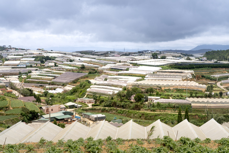 Dalat vegetable farms. View of many greenhouses in Dalat, Vietnam. The agriculture here is very developed