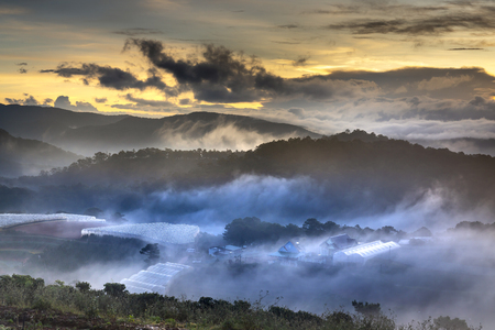A magical image of a clouded valley in the early morning when the aurora appears in Dalat town, Viet Nam 写真素材