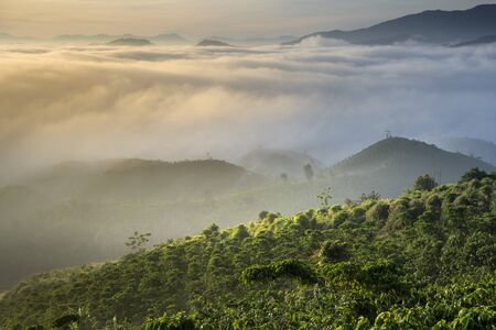 Fanciful scenery of an early morning when the sun rises over the Dai Lao mountain range, Bao Loc district, Lam Dong province, Vietnam 스톡 콘텐츠