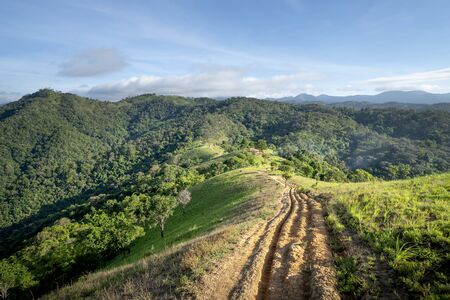 the road with tyre tracks. This is Ta Nang-Phan Dung trekking route through grass hills and forests in the Song Mao Nature Reserve in Binh Thuan province, Vietnam