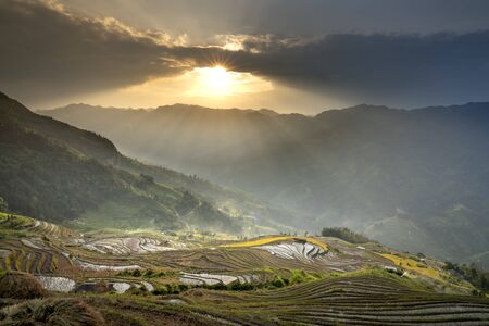 Panorama view of terraced rice field in harvest season in Hoang Su Phi. Ha Giang province, Vietnam. Vietnam landscapes Stockfoto