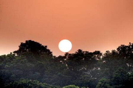 Close-up image of the sun behind a tree at sunset. Beautiful sunsets with orange and red skies behind treetops and mountains. concept of loneliness