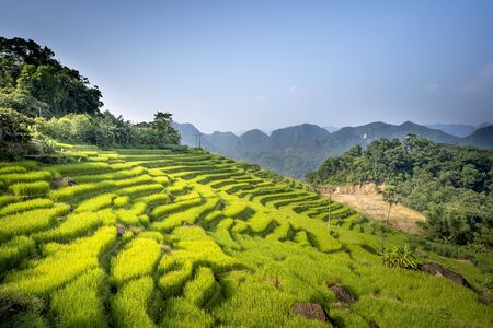 view of beautiful green terraces of Pu Luong commune, Thanh Hoa province, Viet Nam 写真素材