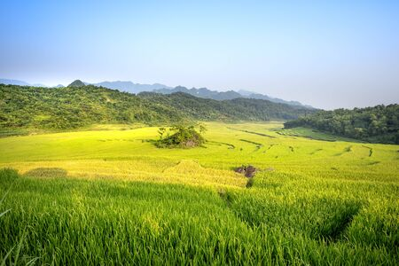 view of beautiful green terraces of Pu Luong commune, Thanh Hoa province, Viet Nam Stockfoto