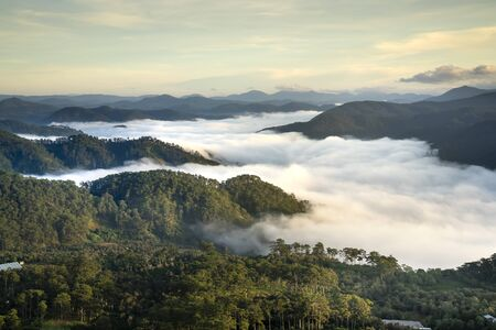 Dawn on the foggy and cloud valley filled with cover pine forests creates impressive plateau beauty in the morning Banco de Imagens