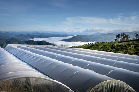 rows of greenhouses to grow flowers and vegetables in the valley in Dalat. Da Lat is one of the best tourist cities in Vietnam