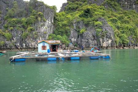 Ha Long Bay Vietnam - July 3, 2020: Fisherman village. stunning nature, houses on water. The people live on boats