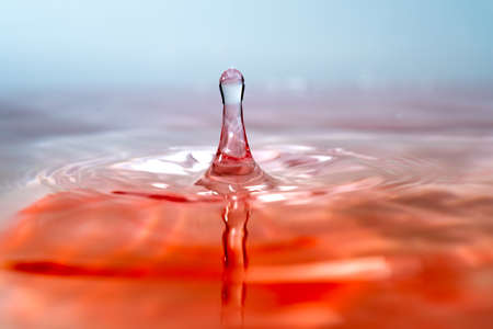 Moment of water drops colliding on pink background. Abstract natural background