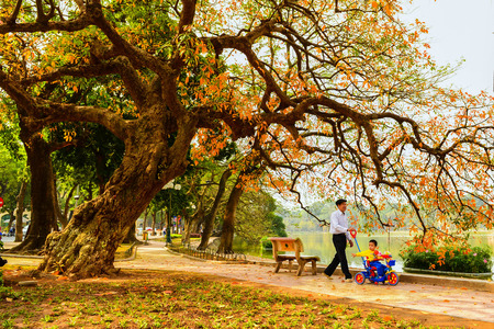 Hanoi, Vietnam - 01 March,2013: The boy and his grandpa walk around at Hoan Kiem lake
