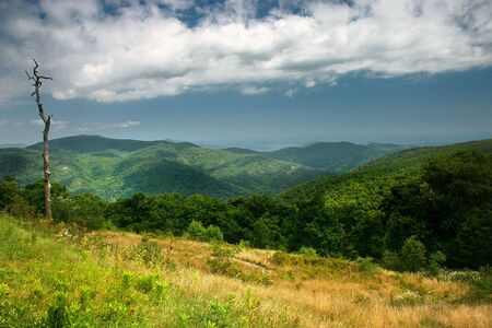 Blue Ridge Mountains, as they appear from the Skyline Drive