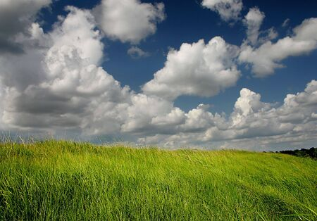 grassy land with overhead clouds Stock Photo