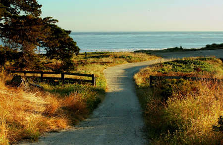 a trail to the ocean