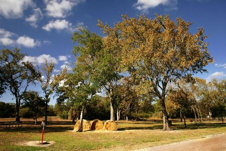 an outdoors picnic area in the fall Stock Photo