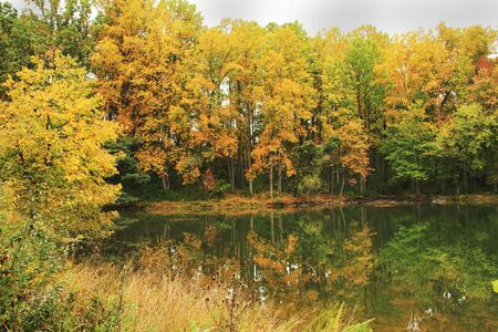View of a quiet lake in early fall season Stock Photo