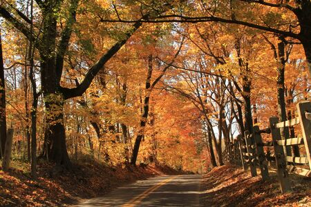 country road during the fall season Stock Photo