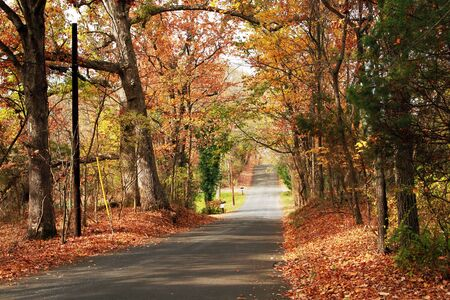 a country road in the fall season Stock Photo