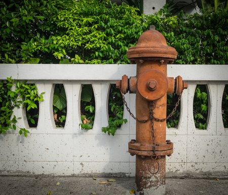 Antique fire hydrant connection on the footpath with low concrete fence background.