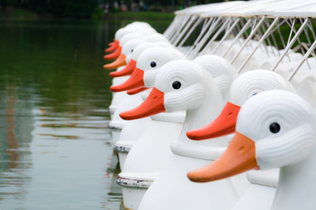 A group of white duck pedal boats is parked on the lake. waiting for the user on a bright morning in the public park. Stock Photo
